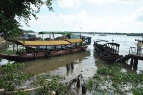 Delta Mekong (4)
