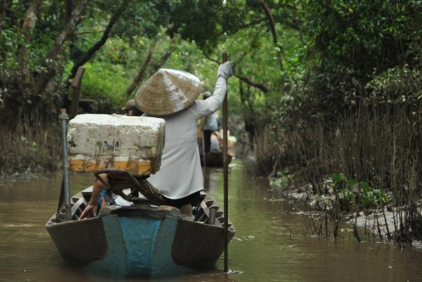 Delta Mekong (98)