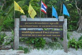 Phi Phi Island (122)