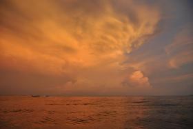 Phi Phi Island (329)