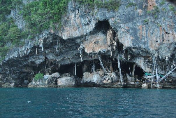 Phi Phi Island (68)