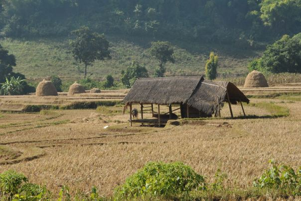 Hsipaw (183)