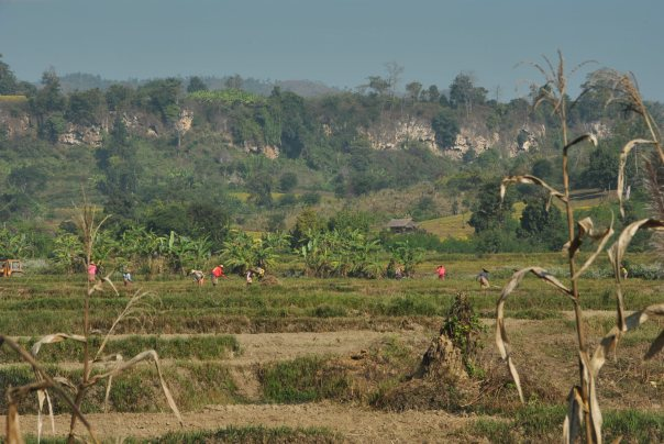Hsipaw (94)