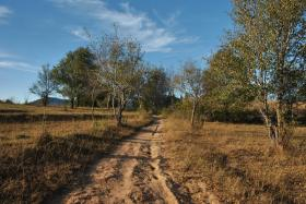 Kalaw i trek Inle (149)