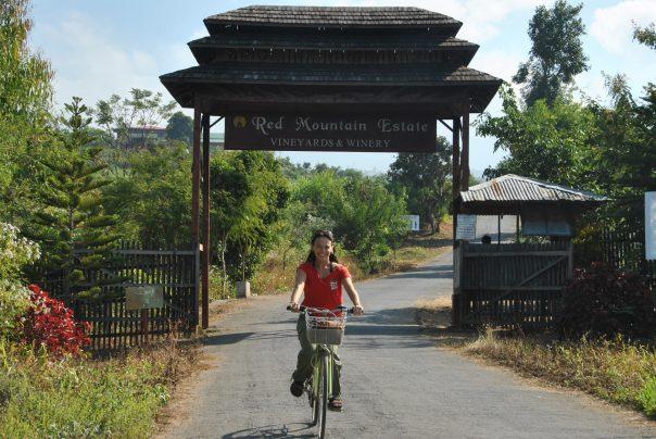 Nyaung Shwe (14)