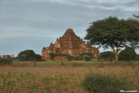 Bagan (101)