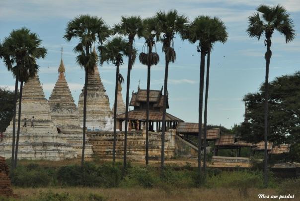 Bagan (158)