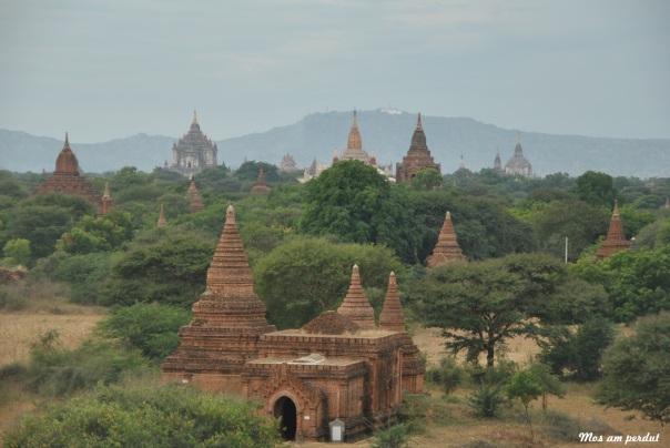 Bagan (356)