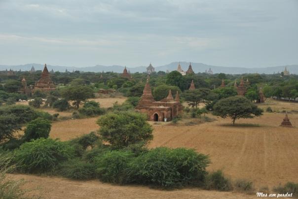 Bagan (361)