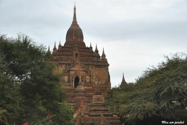 Bagan (373)