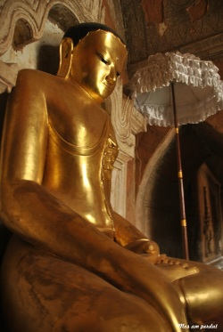 Bagan (379)