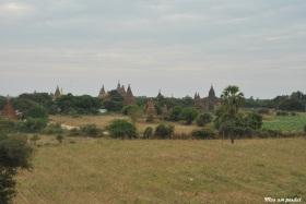 Bagan (403)