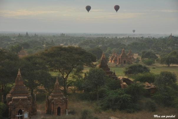Bagan (462)