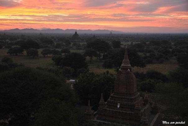 Bagan (535)