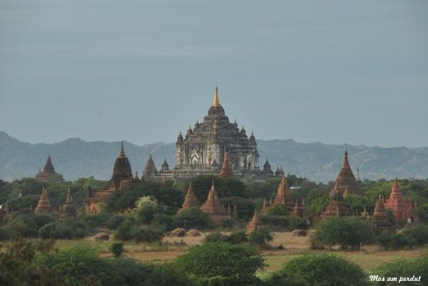 Bagan (96)
