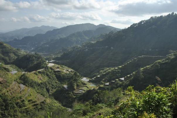 Banaue i Batad (105)
