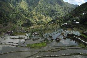 Banaue i Batad (199)