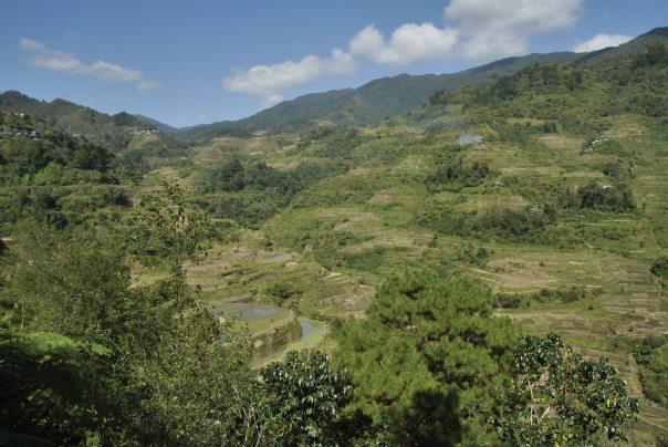 Banaue i Batad (20)