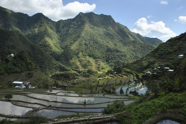 Banaue i Batad (203)