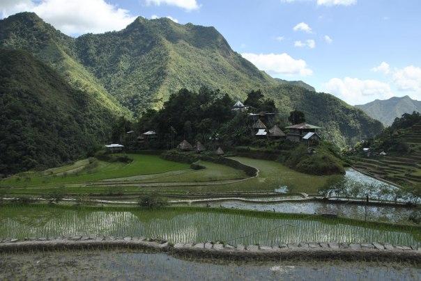 Banaue i Batad (220)