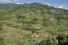 Banaue i Batad (26)