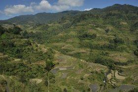 Banaue i Batad (30)