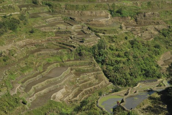 Banaue i Batad (33)