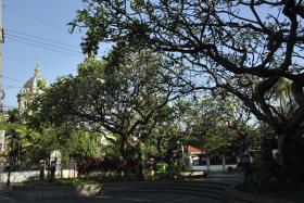 Manila (20)
