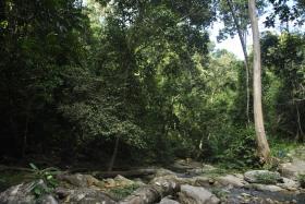 Puerto Princesa i Port Barton (150)