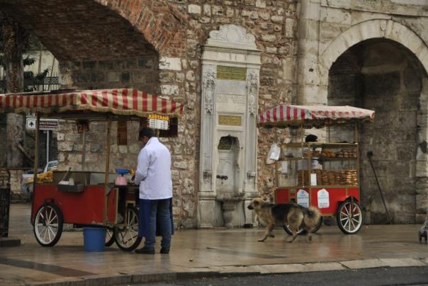 Istambul (110)