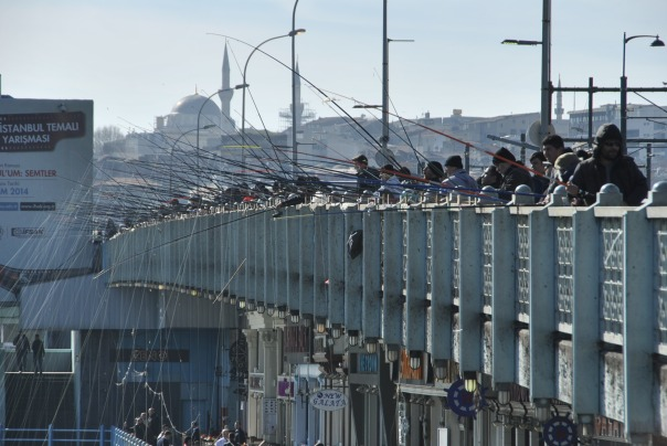 Istambul (489)