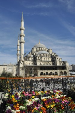 Istambul (536)