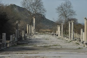 Selçuk i Ephesus (203)