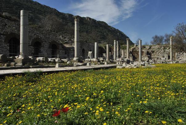 Selçuk i Ephesus (262)