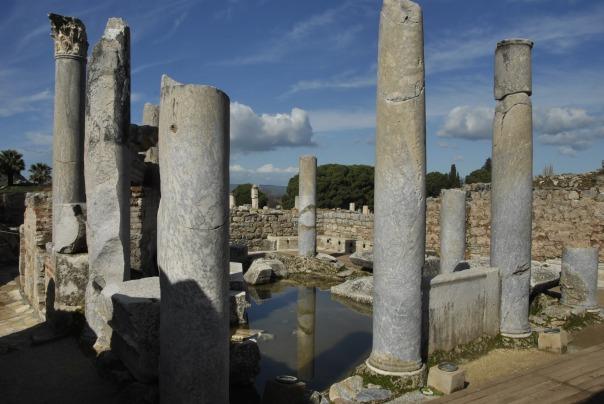 Selçuk i Ephesus (285)