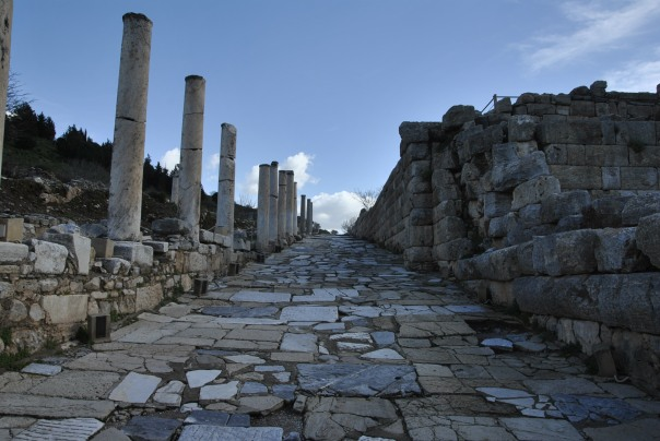 Selçuk i Ephesus (317)