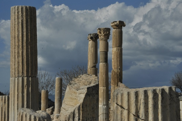 Selçuk i Ephesus (330)