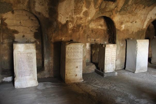 Selçuk i Ephesus (348)