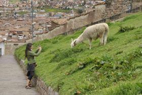 Cusco (181)