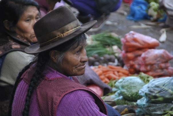 Cusco (301)