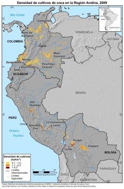 Densidad de cultivos de coca en la región andina, 2009