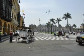 Lima (125)