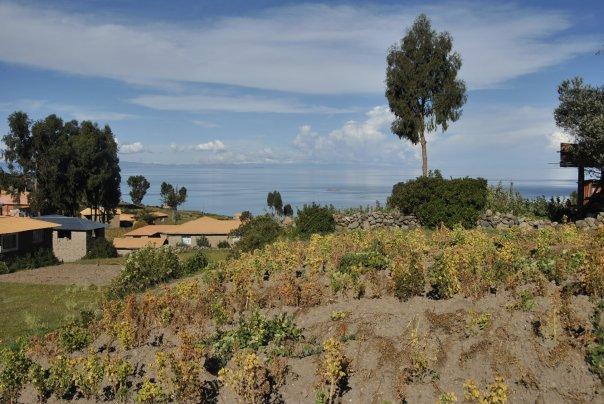 Llac Titicaca (131)