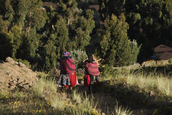 Llac Titicaca (164)