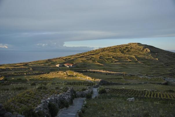 Llac Titicaca (214)