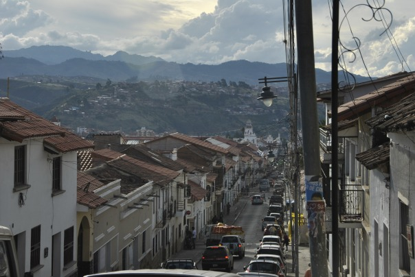 Sucre (226)