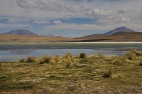 Salar de Uyuni (478)