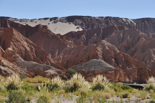 San Pedro de Atacama (44)