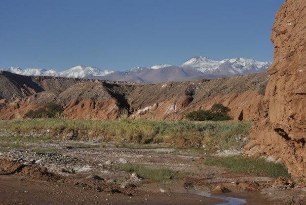 San Pedro de Atacama (82)