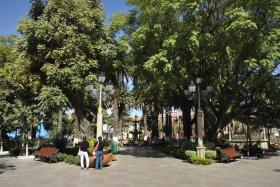 Tarija (8)